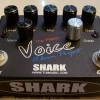 SHARK EFFECT : O-LARN VOICE