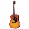 WALDEN GUITAR CD640HS