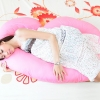 (ส่งฟรี) หมอนคนท้อง หมอนอุ้มรัก jasmine pregnancy pillow