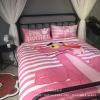 ผ้าปูที่นอนผ้ากำมะหยี่ ลายพิ้งค์ แพนเตอร์ Pink Panther