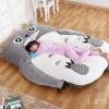 ที่นอนตุ๊กตา โทโทโร่ Totoro เพื่อนรัก