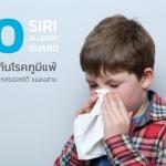 20 วิธีป้องกันโรคภูมิแพ้ - แพ้ไรฝุ่น แมลงสาบ เกสรดอกไม้ เชื้อรา