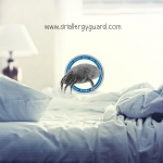 การป้องกันไรฝุ่นสาเหตุภูมิแพ้ ด้วยผ้าปูที่นอนกันไรฝุ่น