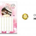 แฮร์คริสตัล 96 เม็ด - HC B 017