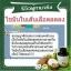 น้ำมันมะพร้าวสกัดเย็น Cold pressed Coconut Oil (Mermaid) thumbnail 4