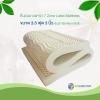 ท็อปเปอร์ยางพารา 7 Zone Latex Topper ขนาด 3.5 ฟุต 3 นิ้ว หุ้มผ้า Bamboo Soft