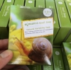 สบู่หอยทาก Snail Soap (Natural Nurishihg Soap)