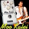 SHARK EFFECT : MOO ODS