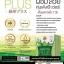 Green Tea Plus กรีนทีพลัส thumbnail 2