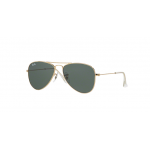 Ray Ban RJ9506S 223/71 GOLD Green