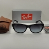 Ray-Ban RB4227 60528G Black Frame Grey Gradient 55mm