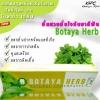 ยาสีฟัน โบทาย่า เฮริร์บ (ฺBotaya Herb)