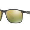 Ray-Ban RB4264 876/6O SHINY GREY Green Chomance Polarized