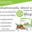 HOSO I Detox โฮโซอิ-ดีท็อกซ์ thumbnail 3